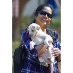 sunita Tripathi