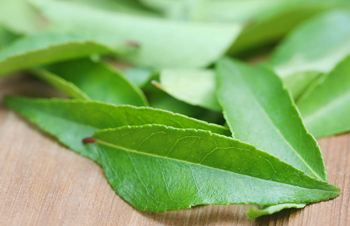 6. Curry Leaves And Coconut Oil For Gray Hair
