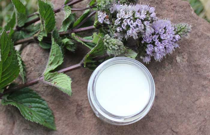 Homemade Lip Balms - Homemade Lavender Mint Lip Balm