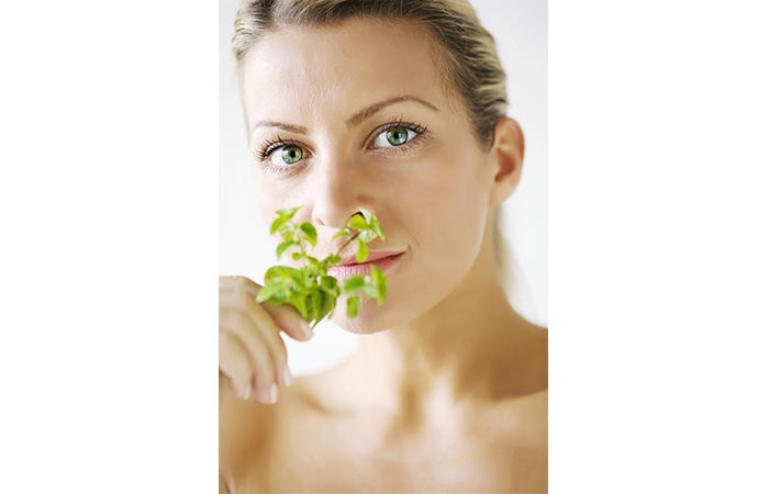Benefits Of Mint Leaves For Acne - Benefits Of Mint Leaves For Acne