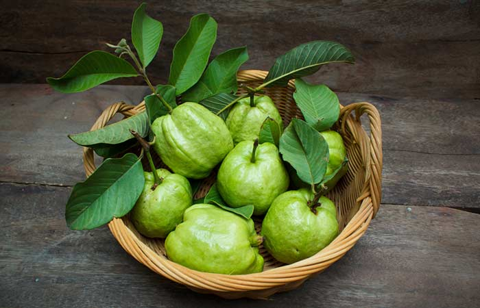 Guava Leaves - Fungal Skin Infection