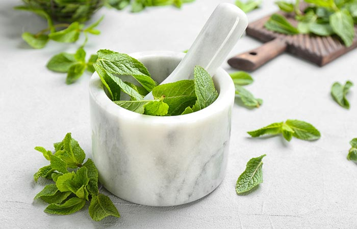 Benefits Of Mint Leaves For Acne - Mint Leaves Paste For Acne