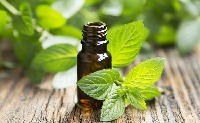 Make Your Feet Soft with Peppermint Oil