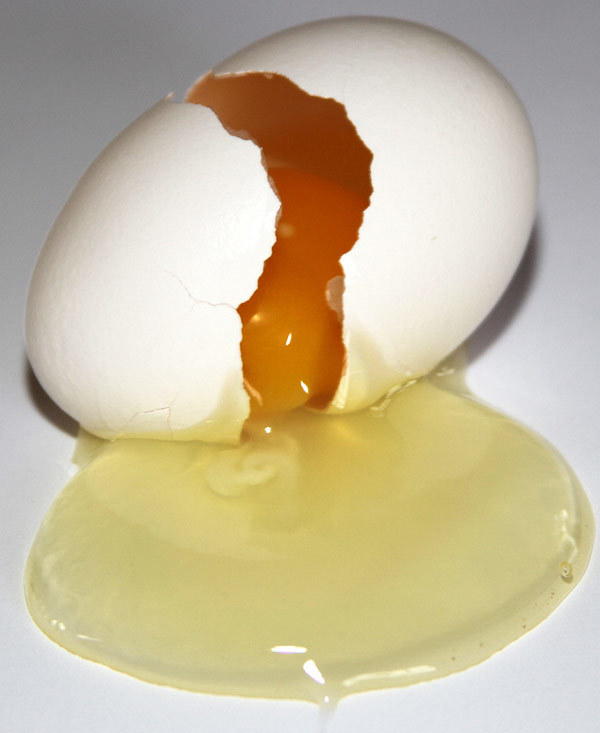 homemade hair conditioner with egg