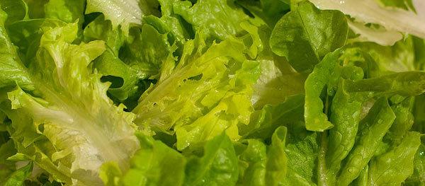 Lettuce leaves for dry skin