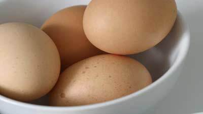 egg best conditioners
