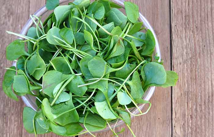 28)-Watercress