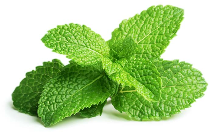 9. Mint Leaves For Dry And Itchy Skin