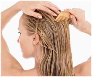 wet hair combing tips