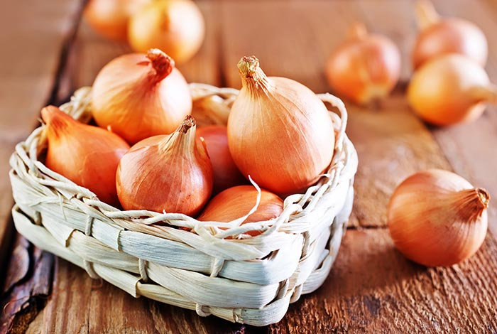 Onion Effective In Facilitating