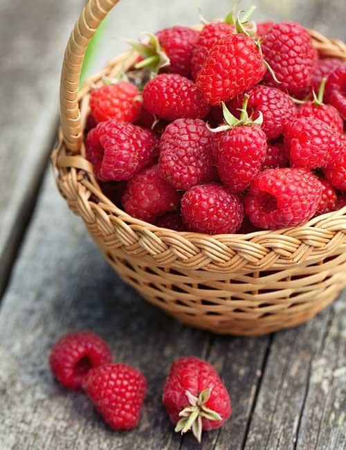 Belly Fat Burning Foods - Raspberries