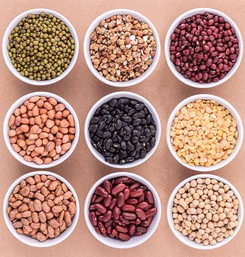 Belly Fat Burning Foods - Beans And Legumes