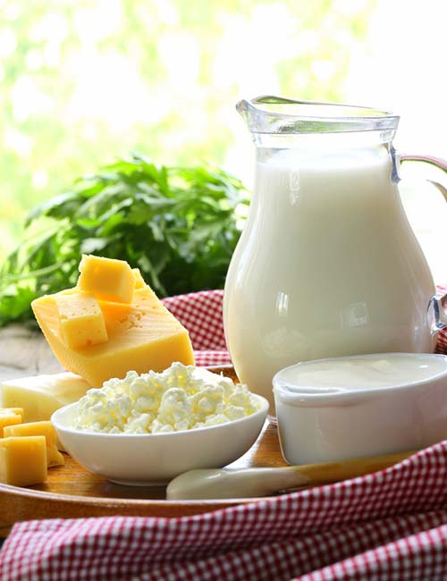 Belly Fat Burning Foods - Dairy Products