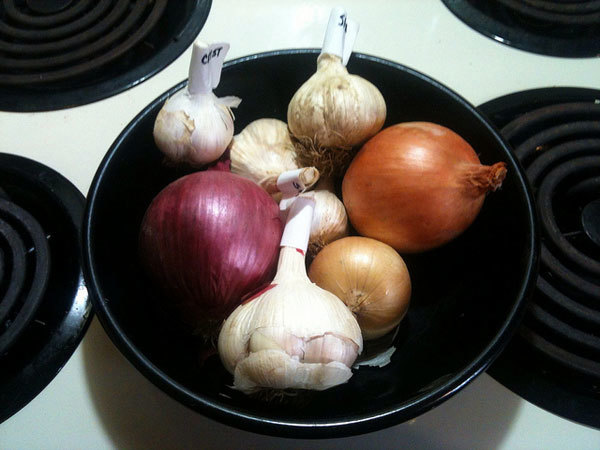 Onions and Garlic Juice Mixture
