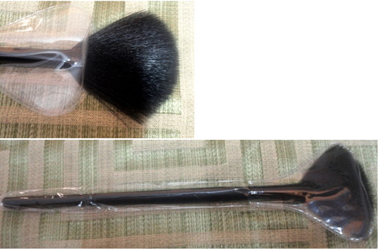 fan brush for makeup