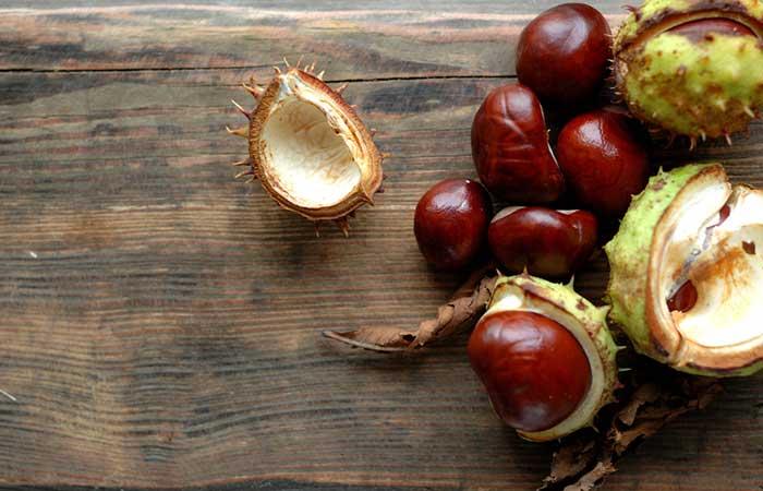 Treat Spider Veins - Horse Chestnut
