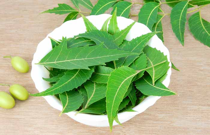 2. Neem Leaves And Rose Water