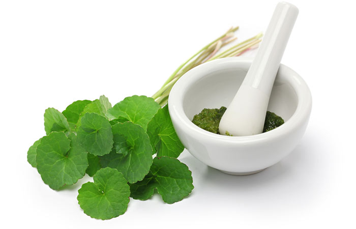 Herbs And Spices For Weight Loss - Gotu Kola For Weight Loss