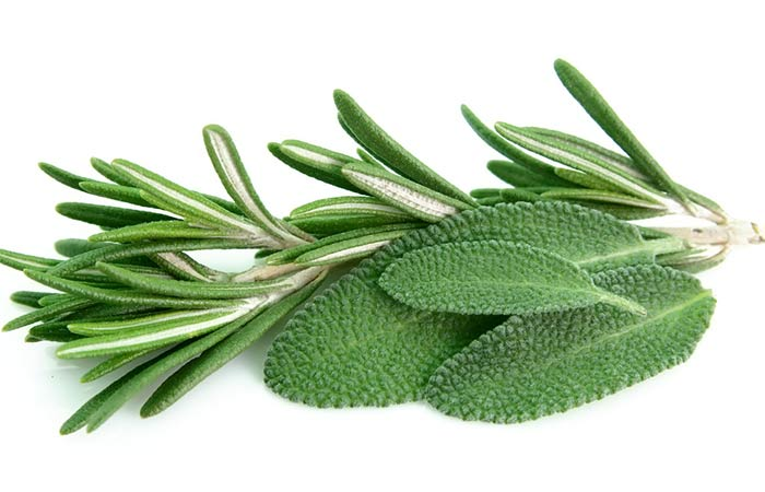 Sage-And-Rosemary