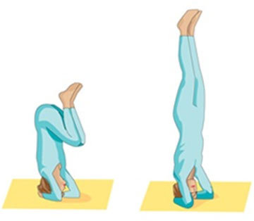 yoga exercise