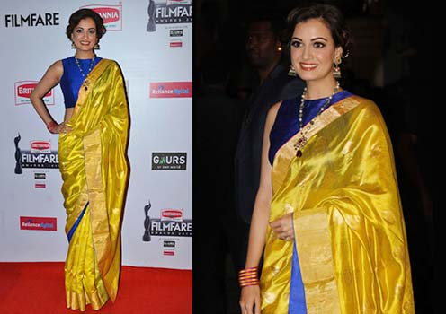 Dia Mirza In Silk Saree