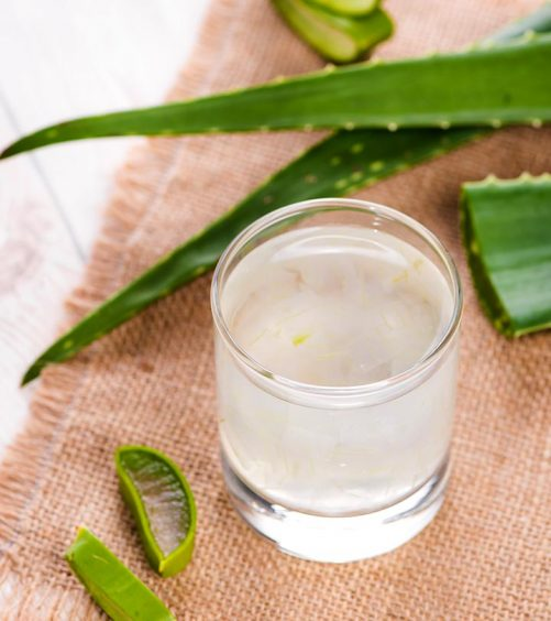 16 Wonderful Benefits Of Aloe Vera Juice (Ghritkumari Saar)