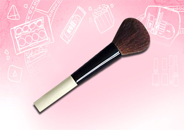 blush makeup brushes