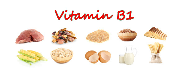 Vitamin B food for hair growth