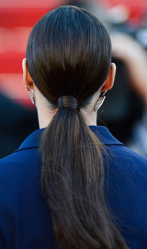 Long Ponytail