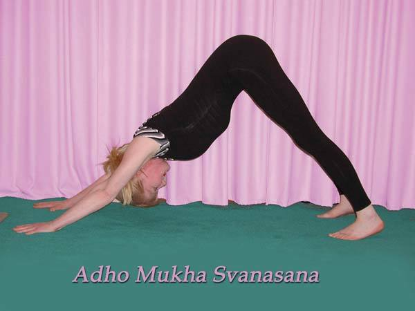 health benefits of adho mukha svanasana