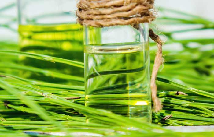 15. Horsetail Extract For Hair Growth