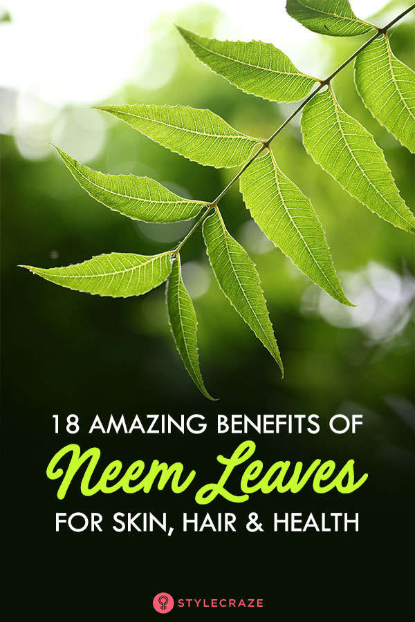 18 Amazing Benefits and Uses Of Neem Leaves For Skin, Hair And Health