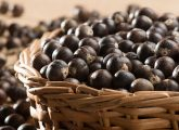 29 Amazing Benefits And Uses Of Acai Berries (Karvandha) For Skin, Hair, And Health