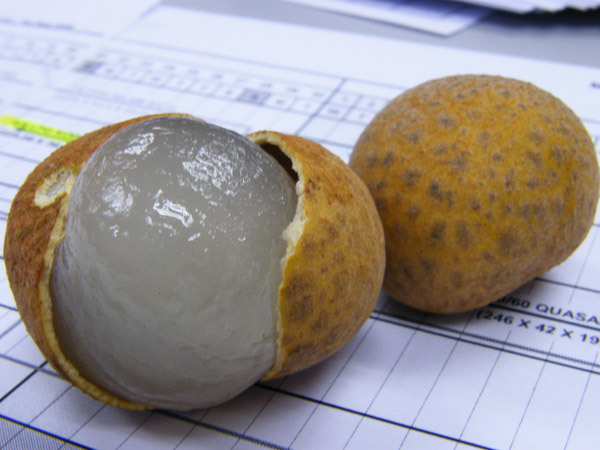 fruits with potassium longan fruit
