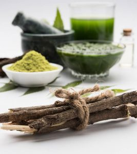 Neem Benefits, Uses, History, And Side Effects