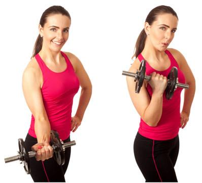bicep-curl-workout