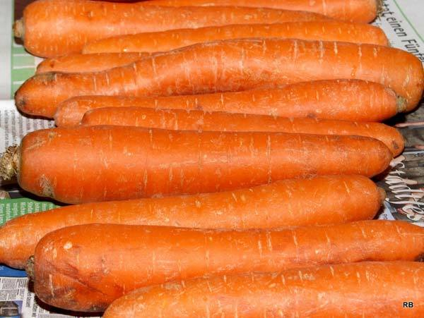 Carrot Juice For Prenatal Care