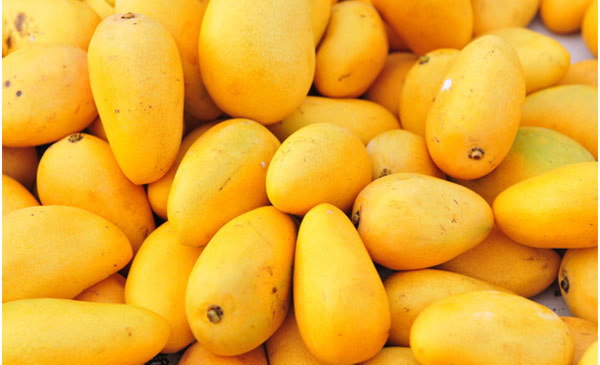 mango skin benefits