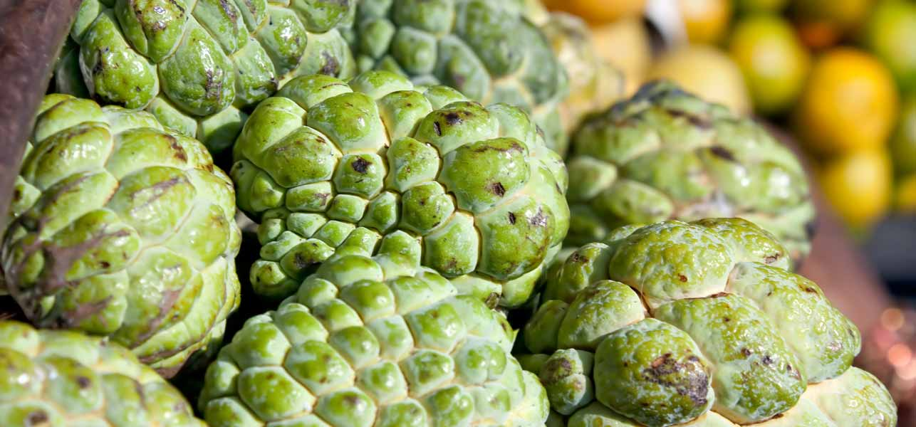 10 Amazing Health Benefits Of Custard Apples (Sugar Apples)