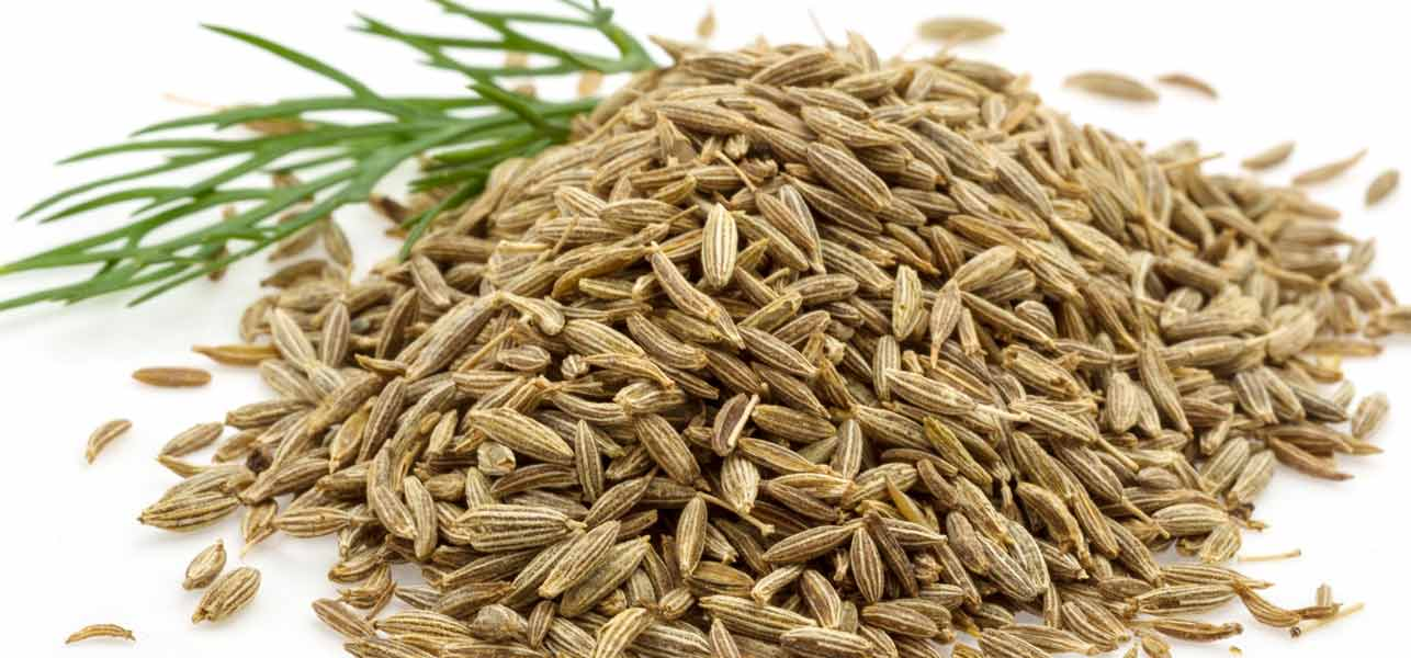 Image result for cumin seeds