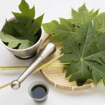 15 Best Benefits Of Papaya Leaf Juice for Skin, Hair And Health – Try Them Out