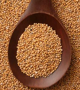 17 Amazing Benefits Of Mustard Seeds For Skin, Hair And Health