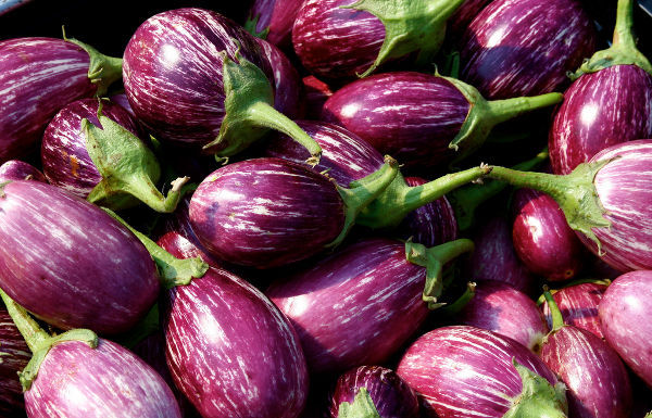 Amazing Benefits Of Eggplant