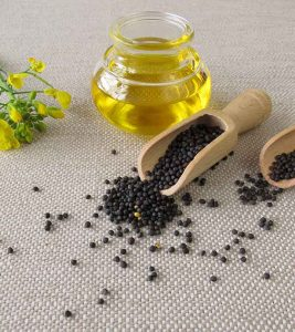 Canola Oil Stunning Research Findings That You Must Know