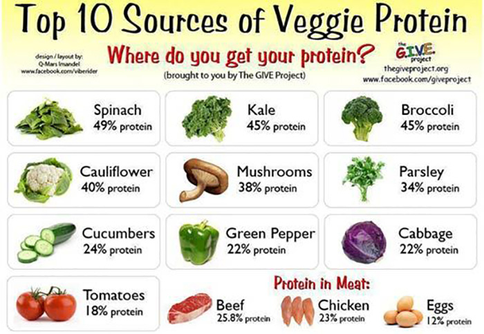 Top 30 protein rich foods you should include in your diet