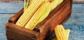 13-Amazing-Benefits-Of-Sweet-Corn-For-Skin-And-Hair