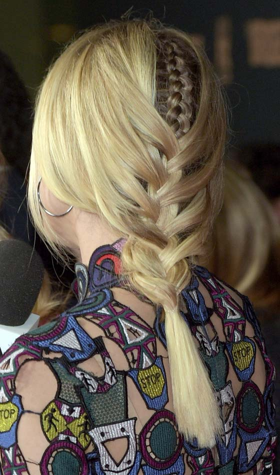 Plaited Fishtail Braid