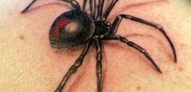 Best-Spider-Tattoo-Designs