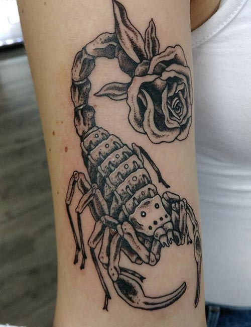 Rose And Scorpion Tattoo Design