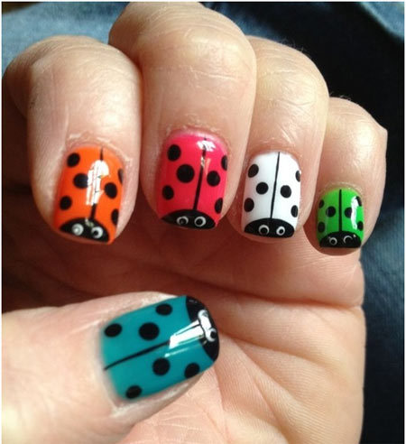 colours of ladybugs